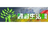 龙湖上海产业互联网技术中心